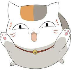 🐱貓咪老師🐱薇薇💕的守護